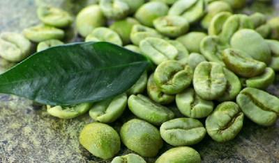 Green Coffee Bean-204